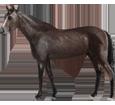 French Saddle Horse ##STADE## - coat 51